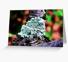 Fungus Fortitude Greeting Card