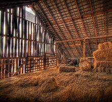 Hayloft by C David Cook