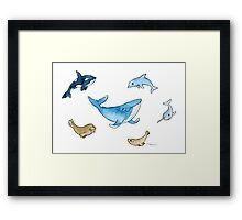 Sea mammals Framed Print