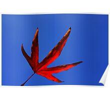vermillion leaf Poster
