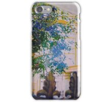 BATH PODIUM (OLD) iPhone Case/Skin