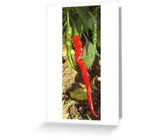Cayenne Pepper Greeting Card