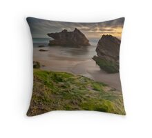 Two Rocks, Green Moss and the Blue hour !! Throw Pillow
