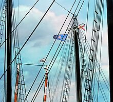 Rigged Up by Susan Werby