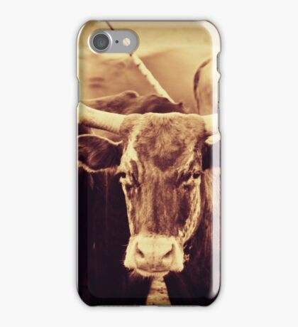 Longhorn Cow iPhone Case/Skin