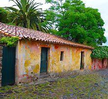 Houses in Colonia del Sacramento, Uruguay by Atanas Bozhikov