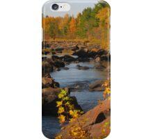 Big Falls iPhone Case/Skin