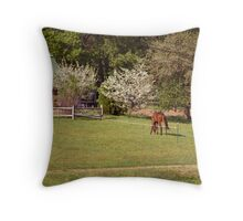 A Spring time Drive By Throw Pillow