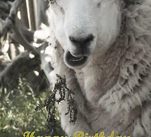 Happy Birthday to Ewe by simpsonvisuals