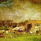 Tumbledown Farm by Catherine Hamilton-Veal  ©
