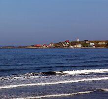 Morning - Cape St. Mary by Jann Ashworth