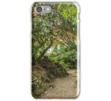 A shady path iPhone Case/Skin
