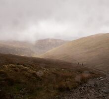 Soggy descent by William Rottenburg