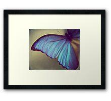 Blue Wing Framed Print