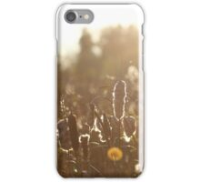 Fall bullrush iPhone Case/Skin