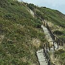 Barsalloch Fort steps, Monreith by sarnia2