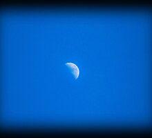 Moon  by Charli McDonald