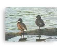 Watching the River Run Canvas Print