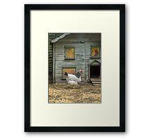 A smart chicken house Framed Print