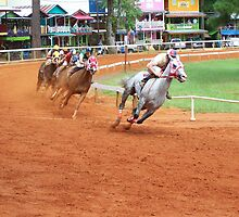 Quarter Horse Racing at the Neshoba County Fair  by cuttincwgrl