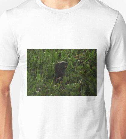 I Otter be in Pictures Unisex T-Shirt