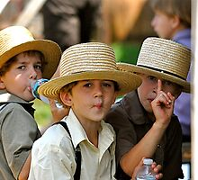 Three Little Amish by Monte Morton