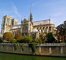 Notre Dame 4, Paris by Alex Cassels