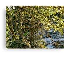 Glacier Autumn - MacDonald Creek Canvas Print