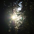 Let the Light Shine Through by HeavenOnEarth
