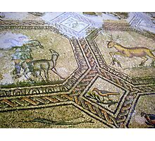 Basilica of Aquileia - floor mosaic Photographic Print