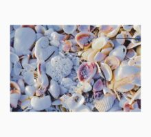Seashells at Sunset Have Great Colors! T-Shirt