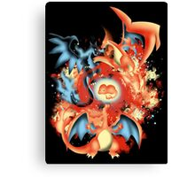 Fire Evolution Canvas Print