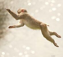 Monkey Jump by peaky40