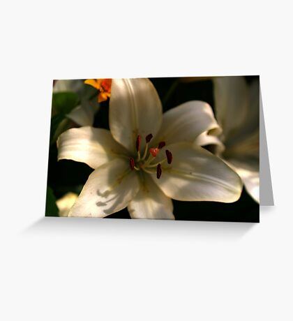 White is Purity Greeting Card