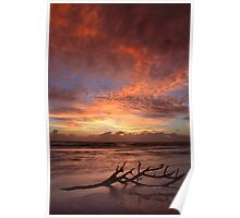 Lee Point Sunrise Poster