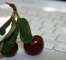 Sour Cherry by rominakatchidb