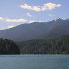 Lake Mills, Olympic National Park, Washington by Stacey Lynn Payne