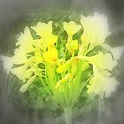 Yellow flower by na320