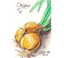 Yellow Onions Photographic Print