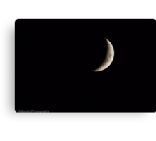 Crescent Slice Canvas Print