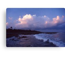 Tropical Surf Canvas Print