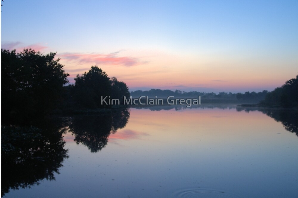 Another Swamp Sunrise Near Home by Kim McClain Gregal