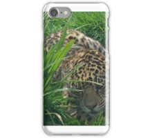 Bet you can't find me... iPhone Case/Skin