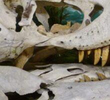 T-Rex Fossil Sticker