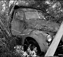 49 GMC Dump Truck by Debbie Robbins