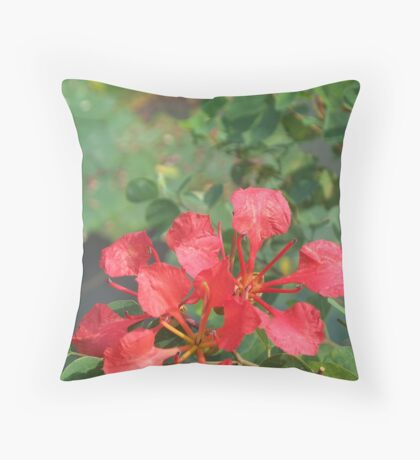 Beautiful Explosion of Red Flower Throw Pillow