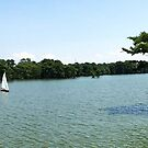 Sailing on Edenton Bay by WeeZie