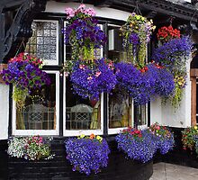 Hanging Baskets by Lynne Morris