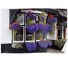 Hanging Baskets Poster
