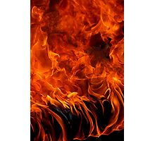 Firebug Photographic Print